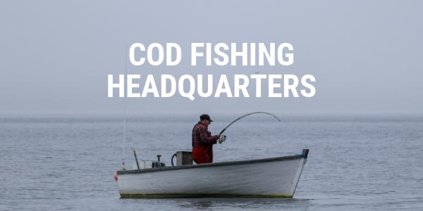 Cod Fishing HQ